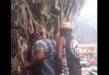 Botafoguense fodendo esposa embaixo da árvore
